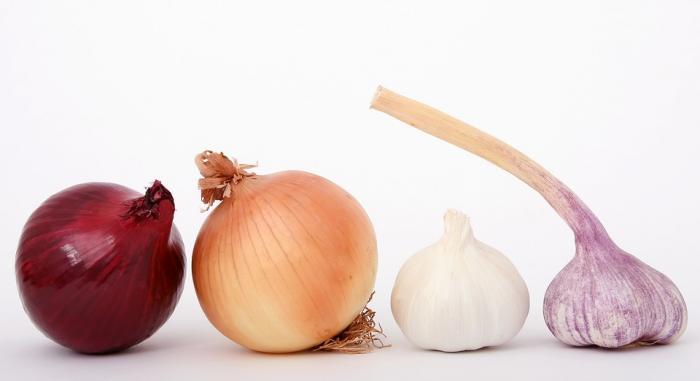 cebolla remedio natural