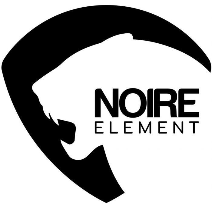 noire element esports