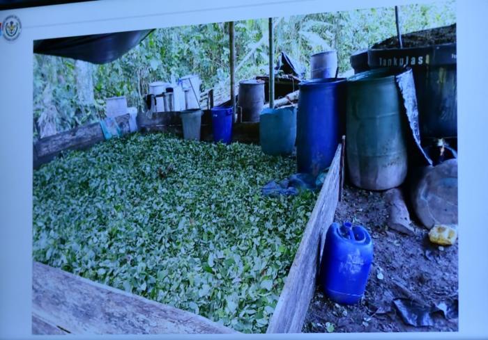 Plantaciones droga La Hormiga