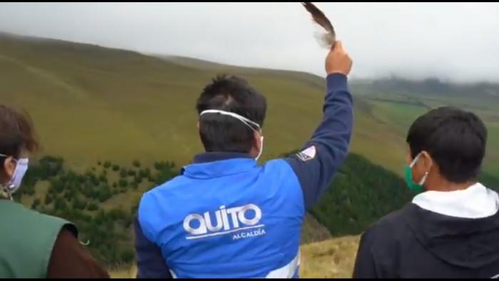 Jorge Yunda durante la liberación de un cóndor en el páramo del Antisana.