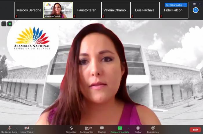 Johanna Cedeño, presidenta de la Comisión de Fiscalización de la Asamblea Nacional