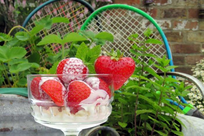 fresas-con-crema