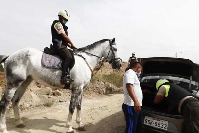 POLICIA ECUESTRE QUE H(32035326)
