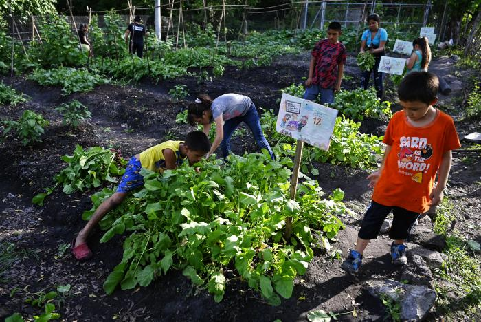 Recursos naturales_Humanos_Biodiversidad_Agricultura