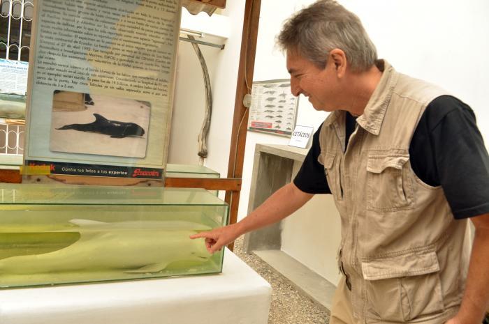 Museo de las Ballenas_Fernando Félix