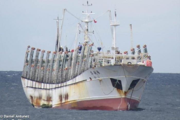 pesca-barcos-chinos-peru-ecuador-pacifico