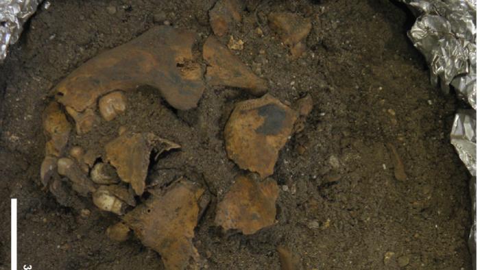 arqueologia-ninos-entierros-estudios-analisis