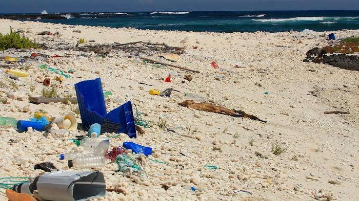 plastic-waste-galapagos-coast-1140x640