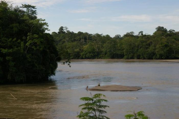 Ministerio-del-Ambiente-y-Agua-Reserva-de-Produccion-de-Fauna-Cuyabeno-Ecuador-1-768x512