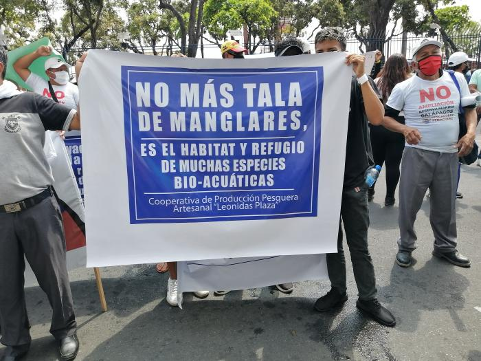 marcha por tala ilegal de manglar