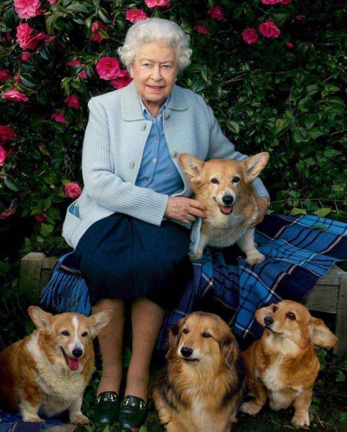 Isabel II junto a sus mascota