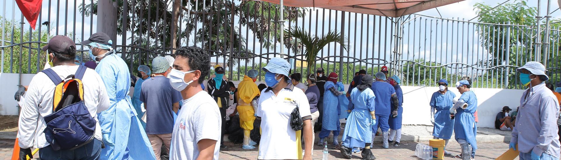 hospital del guamo (31538223)
