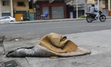 colchones abandonados contaminados