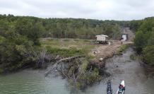 Una de las talas que EXPRESO pudo captar durante un recorrido en el golfo.