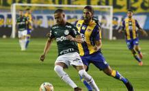 Delfín-Palmeiras