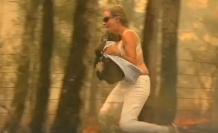 Mujer rescata a un koala