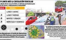 grafico corona