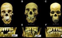 esclavos-africanos-analisis-arqueologia-viral