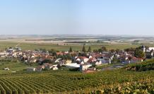 marne-francia-campo