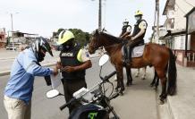 POLICIA ECUESTRE QUE H(32035291)