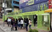 Eleeciones- PAIS- Moreno- binomio