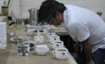 Do Café, SICA