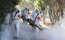 fumigadores 22