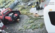 En redes sociales circuló un video de un supuesto maltrato animal.