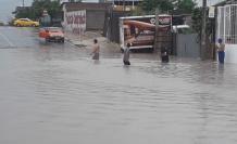 La LIBERTAD LLuvis