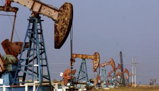 petroleo referencial