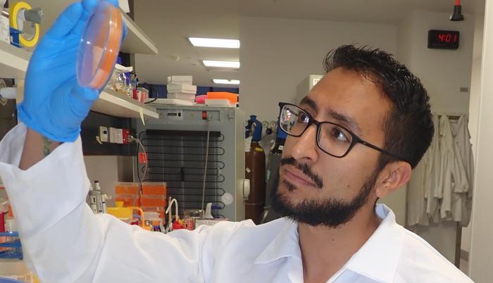 Fernando Gordillo_Investigador_Resistencia a antibióticos