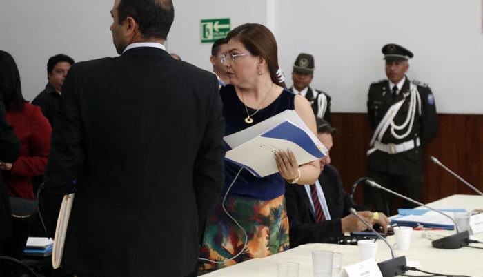 Destitución de Sofía Espín