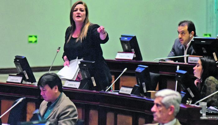 Asambleista Lourdes Cuesta