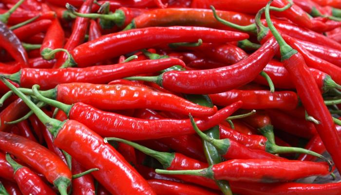 chili-pepper-3923393_960_720