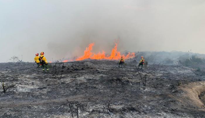 incendio forestal quito casitagua