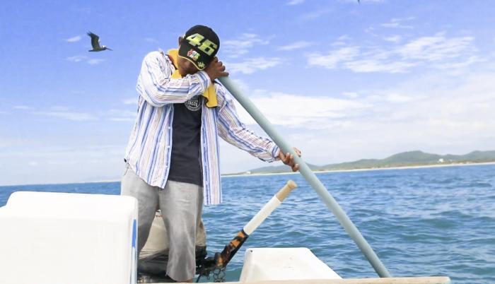 la pesca con caña