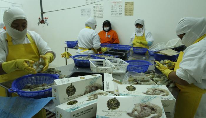 Exportación de camarón
