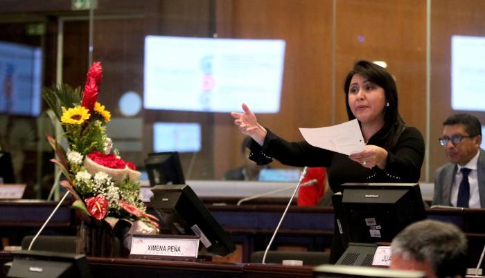 Ximena Peña, Asamblea.