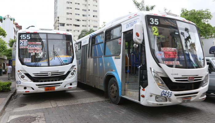 buses carriles