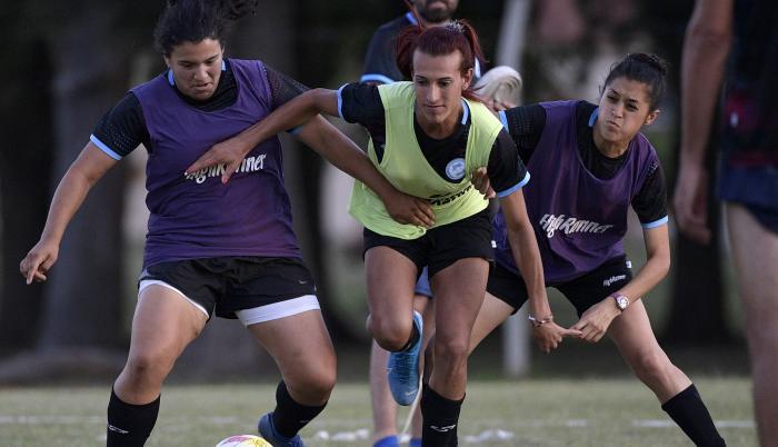 Argentine football pl (31624263)