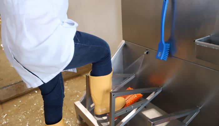 Limpieza-sanidad-Nirsa