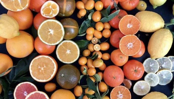 citricos