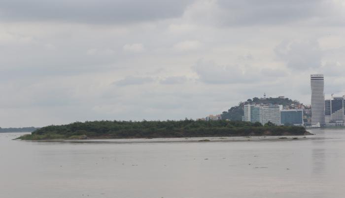 RIO GUAYAS (31885450)