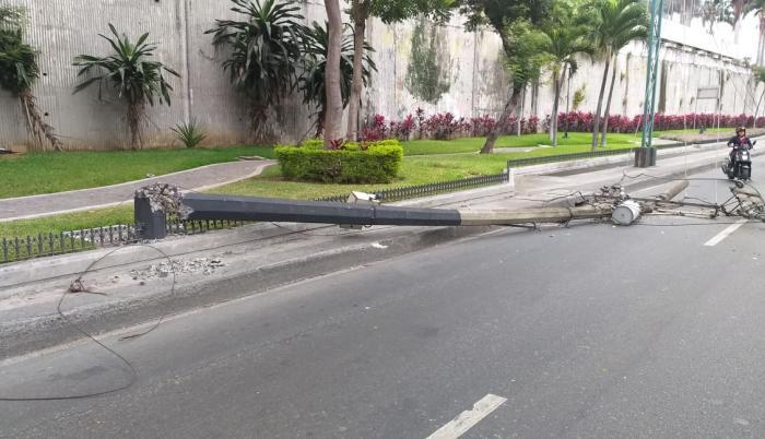 La caída de un árbol y tres postes congestionaron la Carlos Julio Arosemena