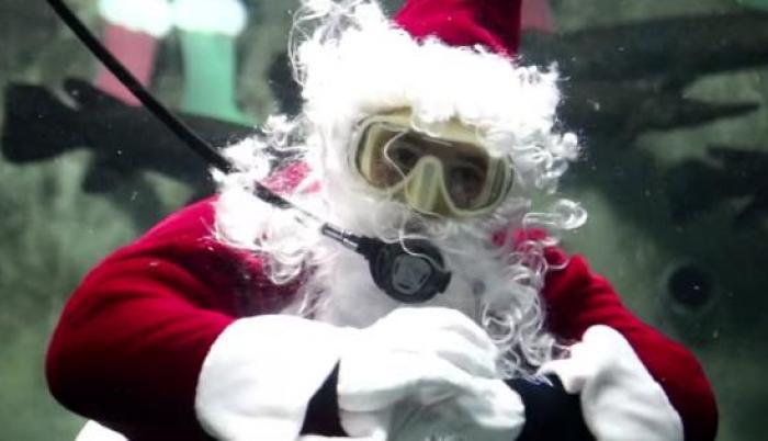 Santa Claus se sumerge en el acuario de Guadalajara