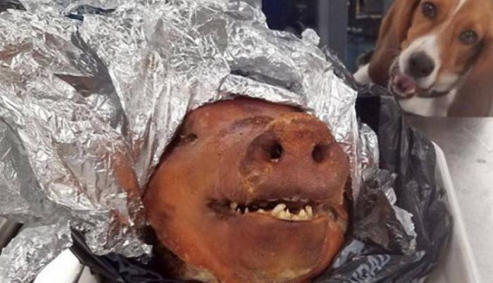 En EE. UU. se prohibe el ingreso de carne de cerdo y productos derivados del mismo. (Imagen: Fox 5)
