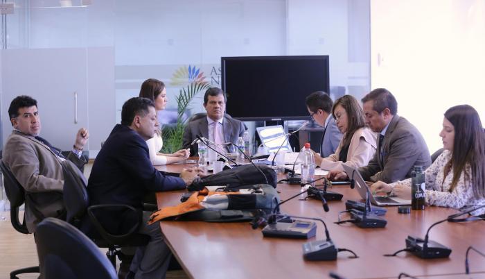 Reunión de la Comisión que investiga el caso de Norma Vallejo.