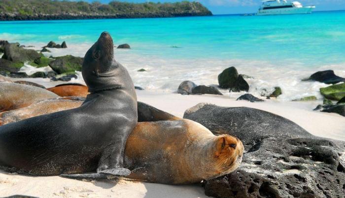 Desde 1978, el archipiélago es Patrimonio Natural de la Humanidad.