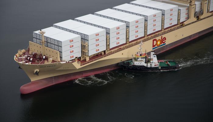 Poder. El banano es la carga más importante de los puertos nacionales y las navieras. Dole es la mayor empresa radicada en el país.