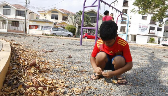 Espacio. En el parque Caminito, los niños junto a sus mascotas van a pasear y a jugar todas las tardes.